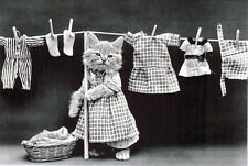 FUNNY PETS card #3 CAT HAD A LAUNDRY DAY... QUITE HEAVY... Modern Russian card