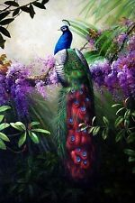 "Canvas Print Animals Peacock Oil painting Picture Printed on canvas 16""X24"" P001"