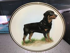 Rottweiler image - bone china collectors plate Edwardian china
