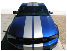 """2005-2009  Ford Mustang  22"""" Rally Stripes Double Decals Over-the-Top 10+2+10"""