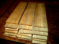 "SIXTEEN (16) THIN, KILN DRIED, SANDED CURLY MAPLE 12 X 3 X 1/4"" LUMBER WOOD"