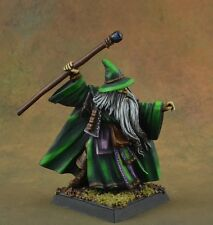 Painted Wizard male, Brandle Birchstaff from Reaper Miniatures metal freehand