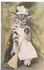 Animal Postcard - Cat - Tired Out - Dressed in Apron with Brush   A6671