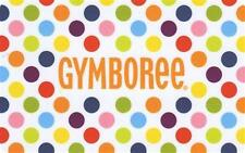 NWT Gymboree lot All new clothes girls boys wholesale resell Free shipping baby