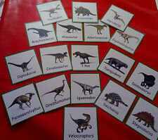 DINOSAURS - 18 FLASH CARDS - TEACHING RESOURCE - CLASS TOPIC/HOME/CHILDMINDER