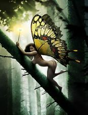FOREST FAIRY POSTER PRINT #33912934