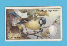 BIRDS - GALLAHER - SCARCE BIRDS NESTS & EGGS CARD NO. 22 - BLUE TIT - 1919