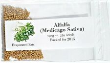 500 All Natural Sprouting Alfalfa Seeds Non GMO Freshly Packed For 2016
