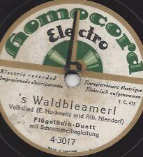 Flügelhorn-Duett mit Schrammel Orchester : A Handvoll Stoana + Waldbleamerl