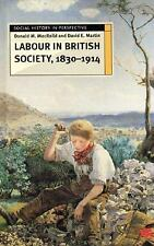 Labour in British Society, 1830-1914 (Social History in Perspective)-ExLibrary