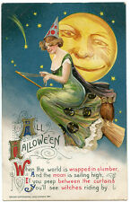 Winsch Schumucker Halloween Large Moon Green Witch on Broomstick Owl Black Cat