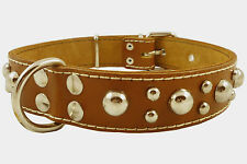 "Cane Corso Thick Real Leather Dog Collar Studs 1.5"" wide 17""-22.5"" neck size"