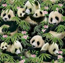 Osos Panda cuarto Gordo pandamania 100% Cotton Quilting fabric 1230 Negro