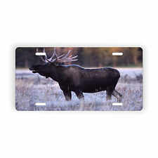 Bull Moose Vehicle Vanity License Plate