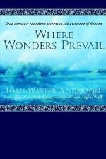 Where Wonders Prevail: True Accounts That Bear Witness to the Existence of Heave