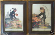 2 Framed Vintage Antique style Monkeys very realistic looking and unique to us