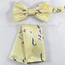 Paisley Design Pre-tied Bow tie and Pocket Square Hankie Set Prom Wedding 644
