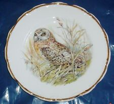 Lovely Owl Collectors Plate