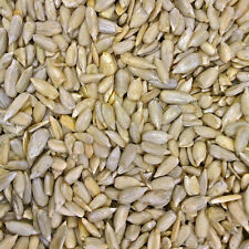Purayou Organic Sunflower Seeds - 500g - Free Shipping