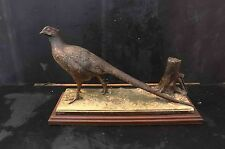 Cock Pheasant bird in pewter on wooden base