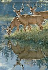 """Scenic Whitetail Deer Wildlife Garden Flag Double Sided Buck Banner 13"""" x 18"""""""