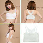 Fashion Sale Sexy Women Lady Butterfly Strapless Boob Tube Top Bandeau Bra Lace