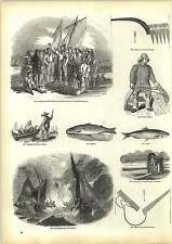 Old Engravings Mackerel Auction Hastings Oyster Dredger Torchlight Salmon Speari