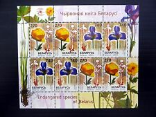 BELARUS 2003 Endangered Flower Species Special Sheetlet of 8 SG546/7 U/M FP9571