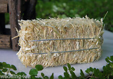 Western Wedding Party Decorations Favors Crafts Railroad (1) Mini Bale Real Hay