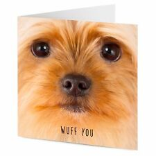 WUFF YOU Yorkshire Terrier dog Birthday Valentine general greetings card