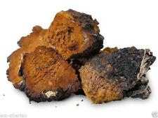 Organic Wild Mushroom Chaga - the birch fungus from Siberia Altai 100g
