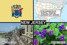 SOUVENIR FRIDGE MAGNET of THE STATE OF NEW JERSEY USA