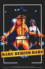 Bare Behind Bars Poster 01 A3 Box Canvas Print
