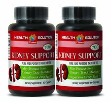 Premium Kidney Cleanse - KIDNEY SUPPORT 700MG - May Help Normalize Urine - 2Bot