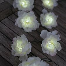 White Rose Solar Light String, 10 Roses, LED Tree Garden Outdoor Hanging, BNIB
