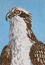 "*NEW* Needle Crossings Osprey ""Fish Eagle"" Bird handpainted Needlepoint Canvas"