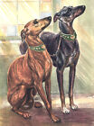 WHIPPET CHARMING DOG GREETINGS NOTE CARD TWO BEAUTIFUL DOGS
