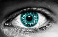 Framed Print - Human Eye with Teal Iris (Picture Poster Medical Anatomy Art)