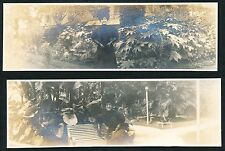 (2) c. 1910 San Antonio Texas VICTORIAN LADY AT PARK Panoramic Photos