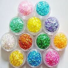 12 Mix Color Nail Art Acrylic Glitter Powder Dust Tips Decoration Tool Thick