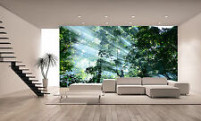 Sunlight in Forest  Wall Mural Photo Wallpaper GIANT DECOR Paper Poster