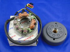 HUSQVARNA TC TE 410 610 NEW STATOR ROTOR IGNITION VOLANO Magnete Ducati 31722100
