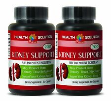 uva ursi extract - KIDNEY SUPPORT Complex 700 Mg - urinary antiseptics - 1 Bot
