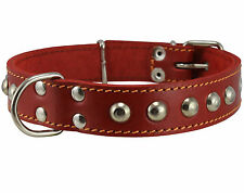"Genuine Leather Dog Collar Studs 1.25""wide 15""-19"" neck size Boxer Bullterrier"