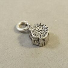 .925 Sterling Silver PETRIFIED FOREST NATIONAL PARK CHARM Arizona NEW 925 TR154