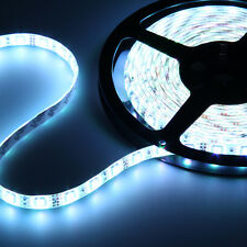 Waterproof Super Bright 5M 3528 5050 SMD 300/600 LED Flexible Strip light DC 12V