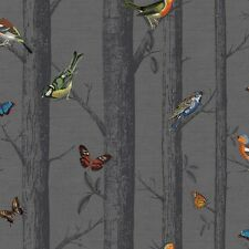 Multi Birds on Black Birch Tree Wallpaper Epping Forest with Butterflies 12230