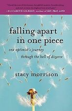 Falling Part in One Piece-one optimists journey thru the hell of divorce-NEW