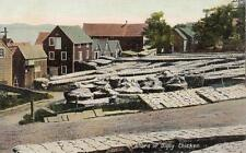 Antique POSTCARD Yard of Digby Chickens Fish DIGBY, NS CANADA 19059