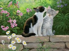 3D Lenticular Picture Kittens Cats on wall Garden Secret size 39 x 29cm